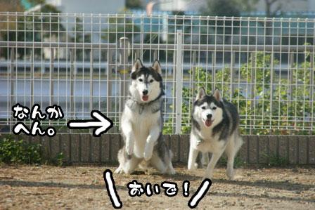 47_20111015221715.jpg