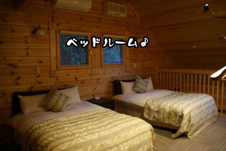 47_20111210210216.jpg