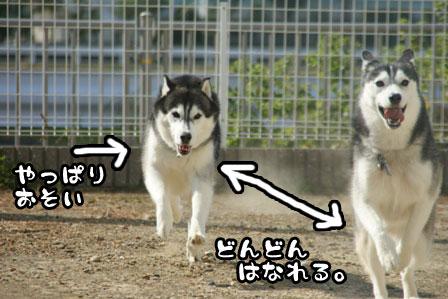 49_20111015221735.jpg