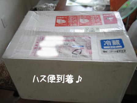 4_20101011203448.jpg