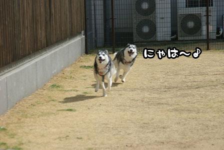 4_20110301203446.jpg