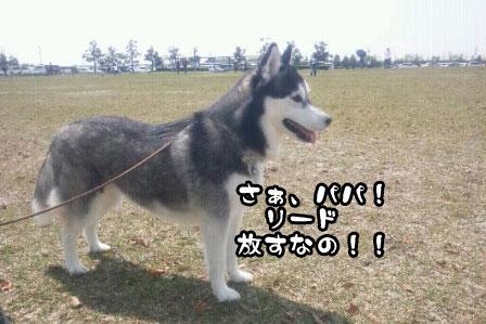 4_20110424204705.jpg