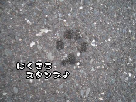 4_20110726200427.jpg