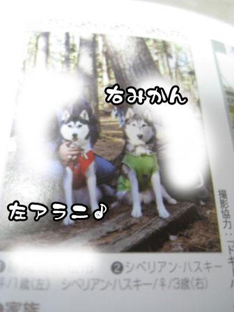 4_20110729191633.jpg