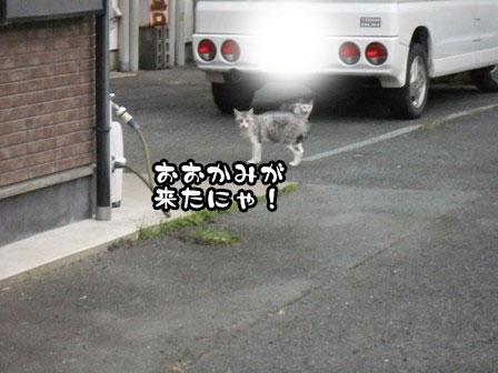 4_20110919201522.jpg