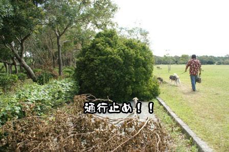 4_20111004210602.jpg