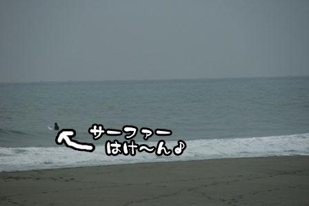 4_20111030220100.jpg