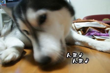 4_20111104194519.jpg