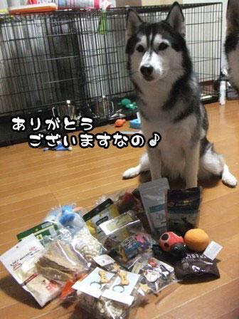 4_20111205214244.jpg