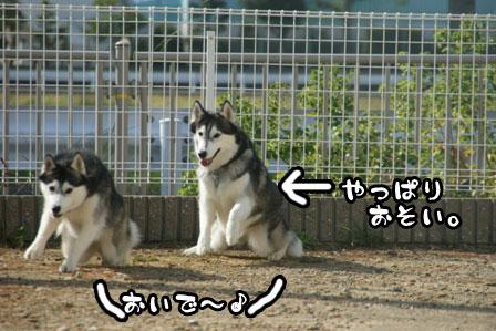 51_20111015221749.jpg