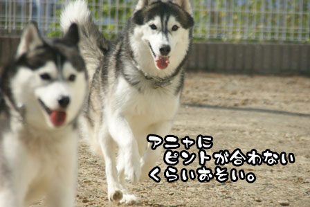 53_20111015221802.jpg