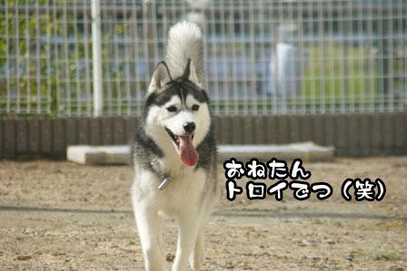 54_20111015221808.jpg