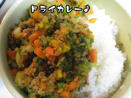 5_20110603215247.jpg