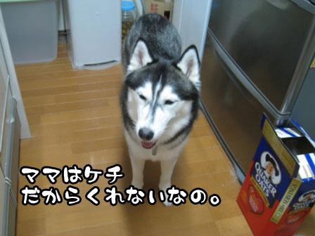 5_20110727201942.jpg