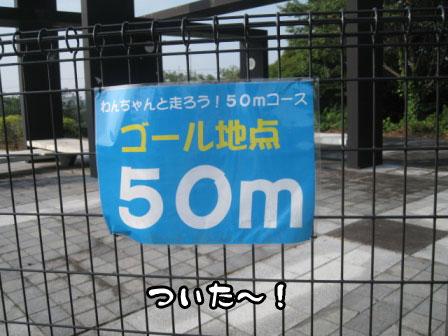 5_20110801193315.jpg
