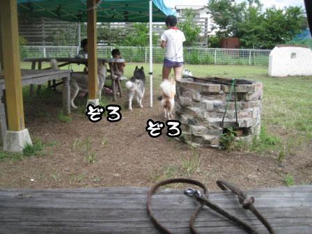 5_20110829214632.jpg