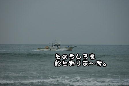 5_20111030220105.jpg