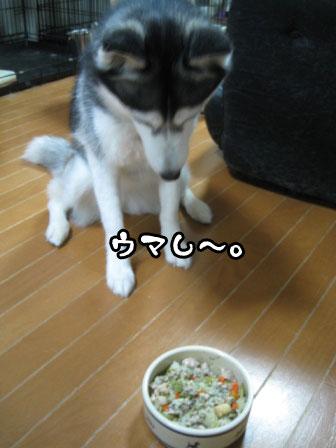 6_20110530220904.jpg