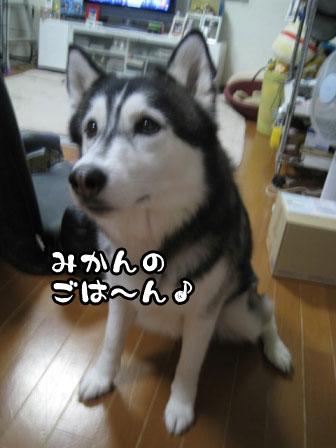 6_20110531214152.jpg
