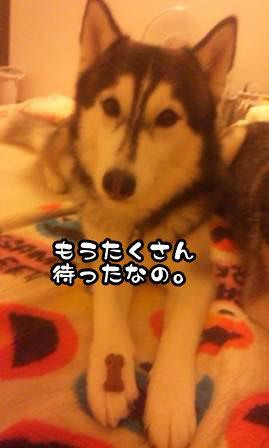 6_20110621210004.jpg