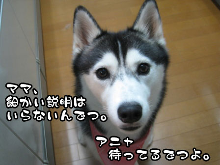 6_20110823213913.jpg