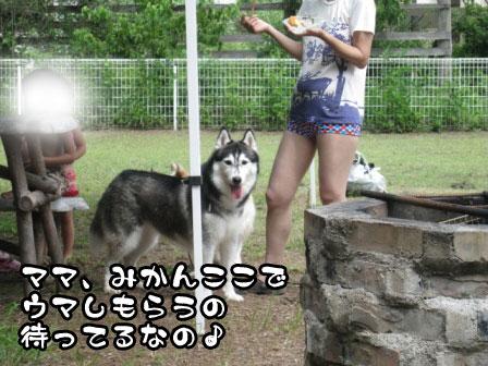 6_20110829214637.jpg
