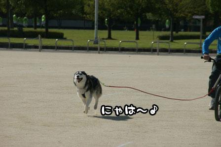 6_20111002200102.jpg