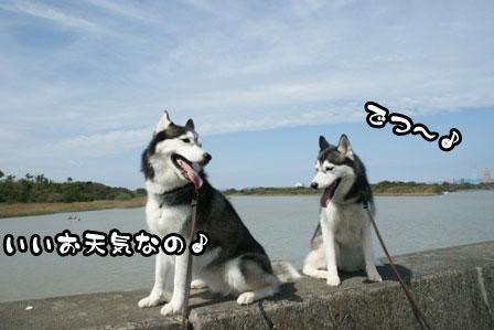 6_20111004210612.jpg