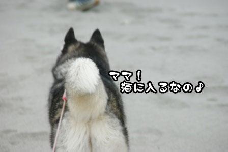 6_20111030220129.jpg