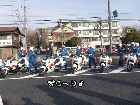 6_20120105193322.jpg