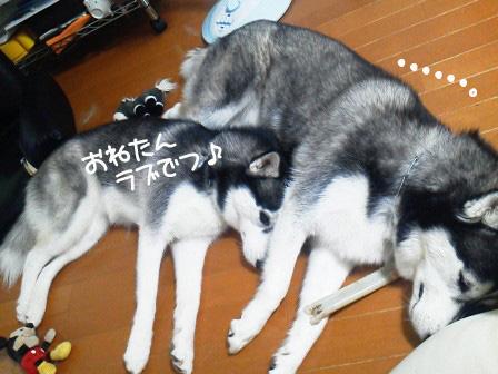 7_20100910211322.jpg