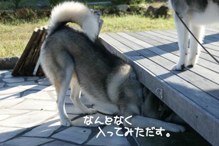 7_20100926153536.jpg
