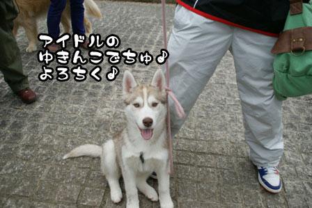 7_20110220225103.jpg