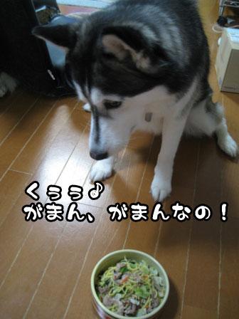 7_20110531214200.jpg