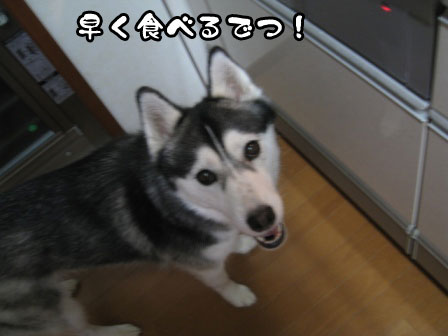7_20110603215257.jpg
