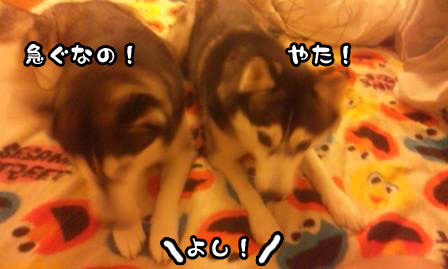 7_20110621210008.jpg