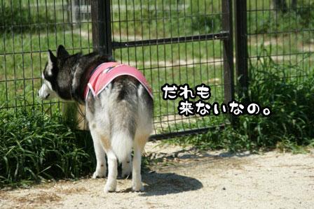 7_20110809200956.jpg