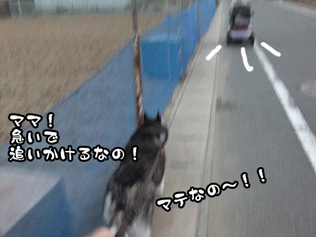 7_20110920210940.jpg