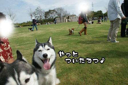 7_20111004210616.jpg