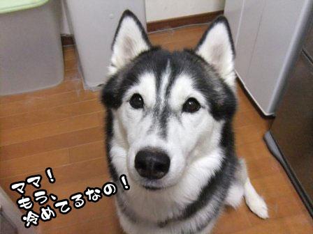 7_20111006205810.jpg