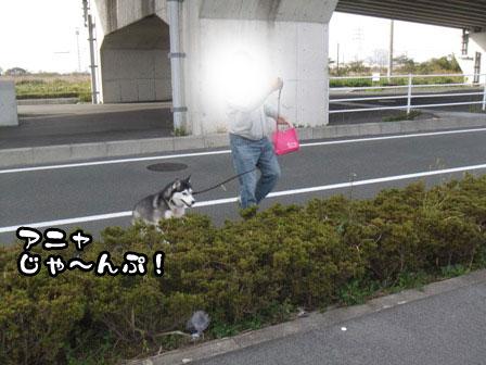 7_20111127203903.jpg