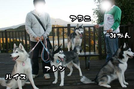 7_20111210192345.jpg