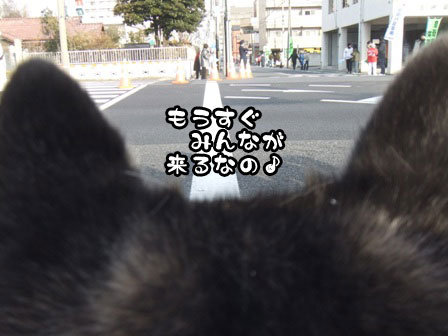 7_20120105193326.jpg