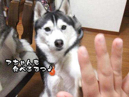 7_20120109214300.jpg