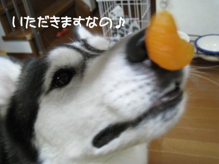 8_20100614215412.jpg