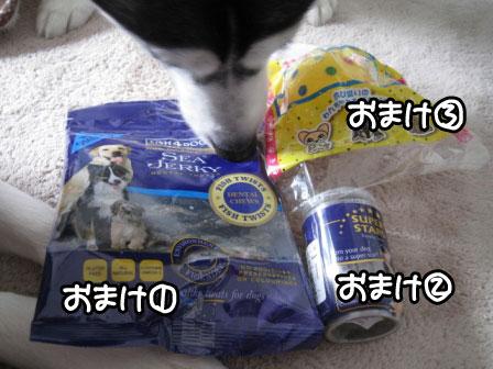 8_20110129213106.jpg
