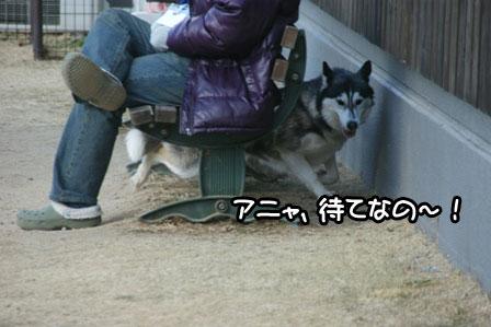 8_20110201193208.jpg