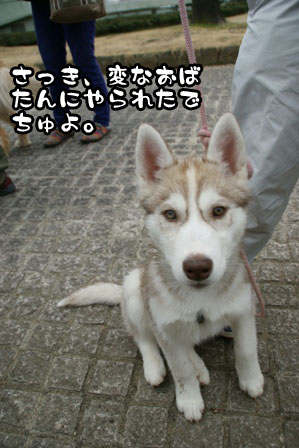 8_20110220225108.jpg