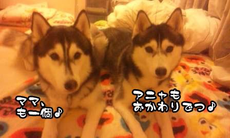 8_20110621210014.jpg