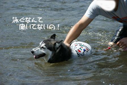 8_20110826214705.jpg